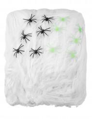 Hvidt spindelvæv med edderkopper 500 g