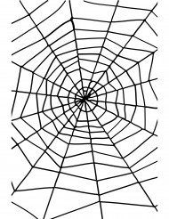 Spindelvæv Halloween