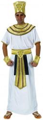 Egyptisk farao - udklædning voksen