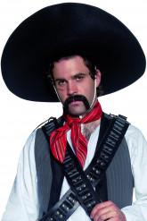 Mexicansk sombrerohat voksen
