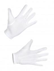 Korte hvide handsker til voksne