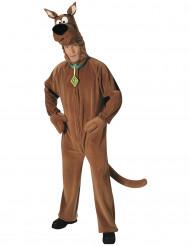 Kostume Scooby-doo™ voksen
