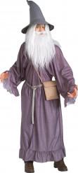 Kostume Gandalf Ringenes Herre™ voksen