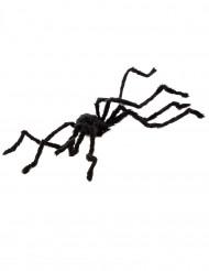 Lodden edderkop Halloween