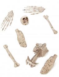 Halloween pynt- Pakke med 8 knogledele