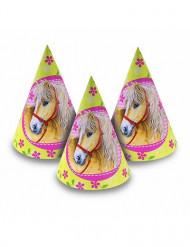 6 Festhatte hest