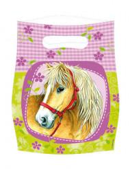 6 Gaveposer hest