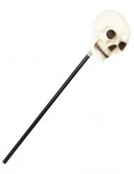 Stok med dødningehovede Halloween