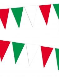 Fan guirlande italien