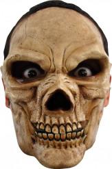Kranium maske voksen