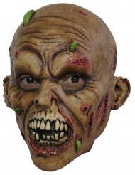 Zombie Rådden hud Maske Voksen Halloween