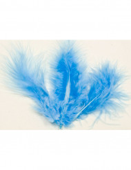 20 Dekorationsfjer blå 5,5 cm