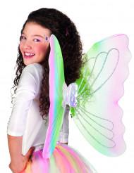 Multifarvede sommerfuglevinger