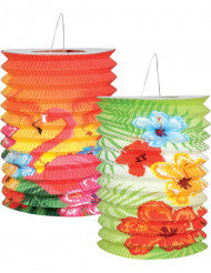 2 Hawaii lanterner