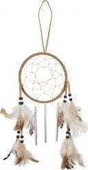 Drømmefanger indianer