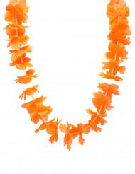 Orange Hawaiikrans
