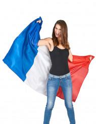 Supporter kappe Frankrig