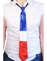 Slips Frankrig