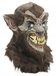 Maske varulv voksen Halloween
