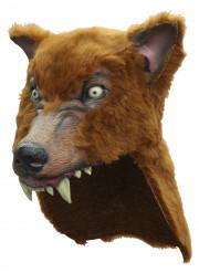Hovedbeklædning brun ulv voksen