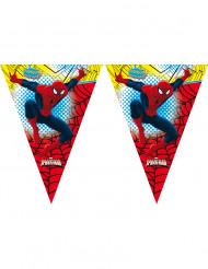 Guirlande Spiderman™