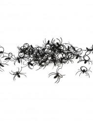 Pose med 50 edderkopper