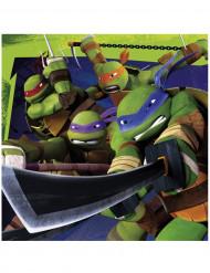 20 stk Ninja Turtles™ servietter