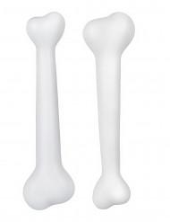 Sæt med 2 forhistoriske knogler