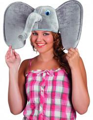 Hat elefant til voksne