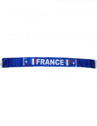 Frankrig supporter-tørklæde