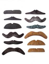12 overskæg set