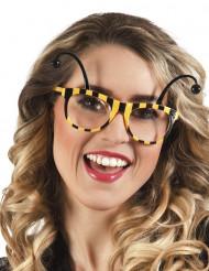 Bi-briller voksen