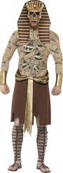 Udklædning Zombie Farao voksen halloween