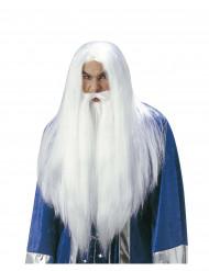 Troldmands paryk med skæg voksen