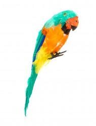 Grøn eksotisk papegøje
