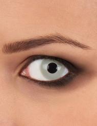 Kontaktlinser fantasy zombieøjne grå voksen Halloween