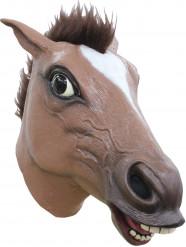 Maske brun hest