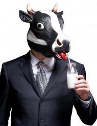 Maske ko