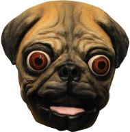 Maske Mops Hund