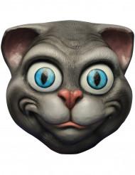 Maske kat