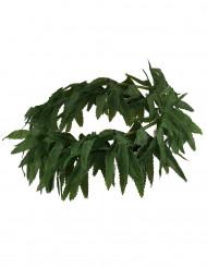 Pandebånd blade tropisk