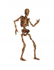 Dekoration rådnende skelet Halloween 180 cm
