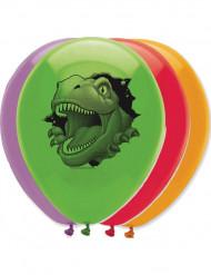 Balloner 6 stk. dinosaurus
