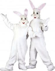 Kaninmaskot udklædning til voksne