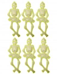 6 små selvlysende skeletter 15 cm Halloween