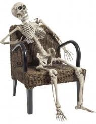 Skelet 160 cm Halloween