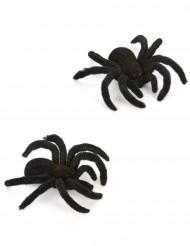 2 Edderkopper 10 cm Halloween