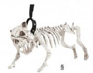 Skelet hund i snor 45 cm Halloween