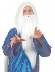Paryk troldmand med skæg til mænd