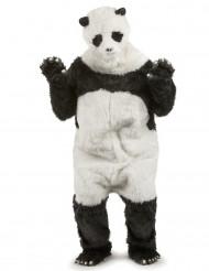 Panda - udklædning voksen
